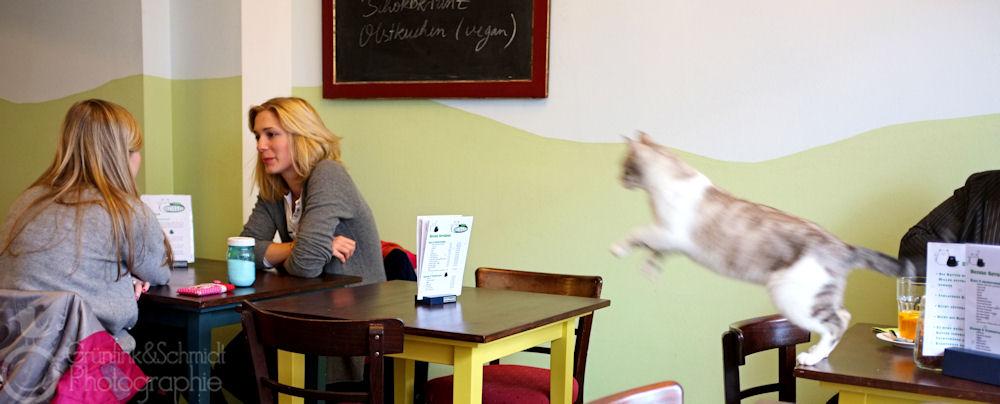 04 Cafe Schnurrke kl